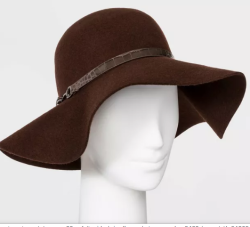 Women's Felt Wide Brim Hat by A New Day (image via Target)